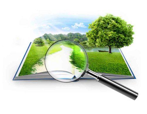 Оценка земельного участка: как и зачем ее проводить